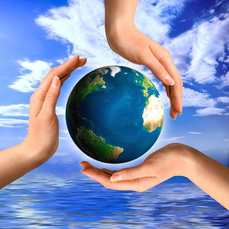Sustainability And Environmental Impact Uk Business Advisors