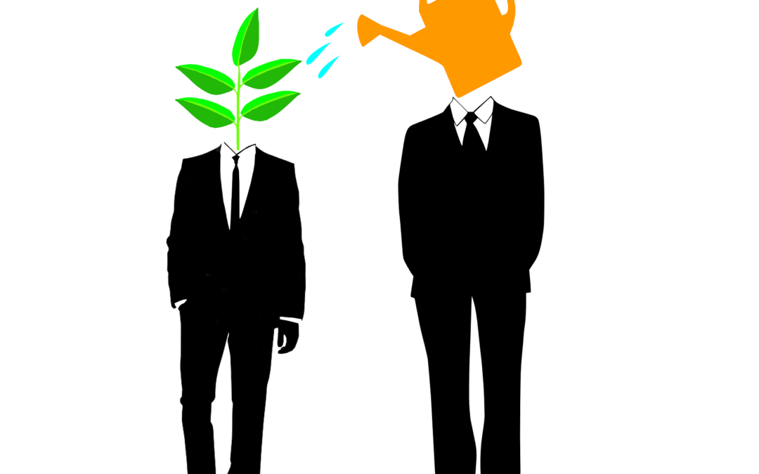 Small Business Mentoring, Not More Rules